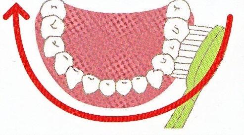 電動歯ブラシでの磨き方2